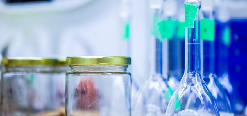 Fleas in a Jar Experiment